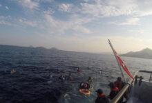 Photo of تركيا تواصل إنقاذ المهاجرين واليونان تستمر بإعادتهم وصويلو يعلّق