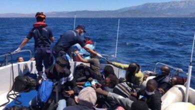 Photo of تركيا تنقذ طالبي لجوء أجبرتهم اليونان على العودة إلى المياه الإقليمية