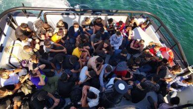 Photo of تركيا تنقذ أكثر من 200 مهاجراً في مياه سواحلها الغربية